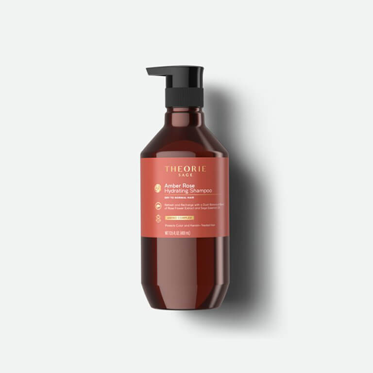 Best shampoo for dry hair by THEORIE